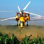 Авиахимработы вертолетами - услуги по обработке кукурузы