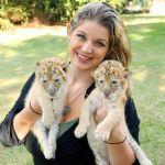 Котята крупных кошек из частного питомника