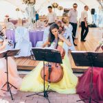 Музыканты - струнное трио, рок, поп, классика, музыка из кино